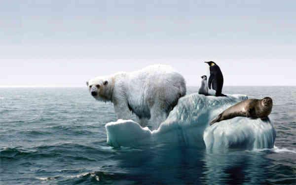 2021 – an crucial în lupta împotriva încălzirii globale