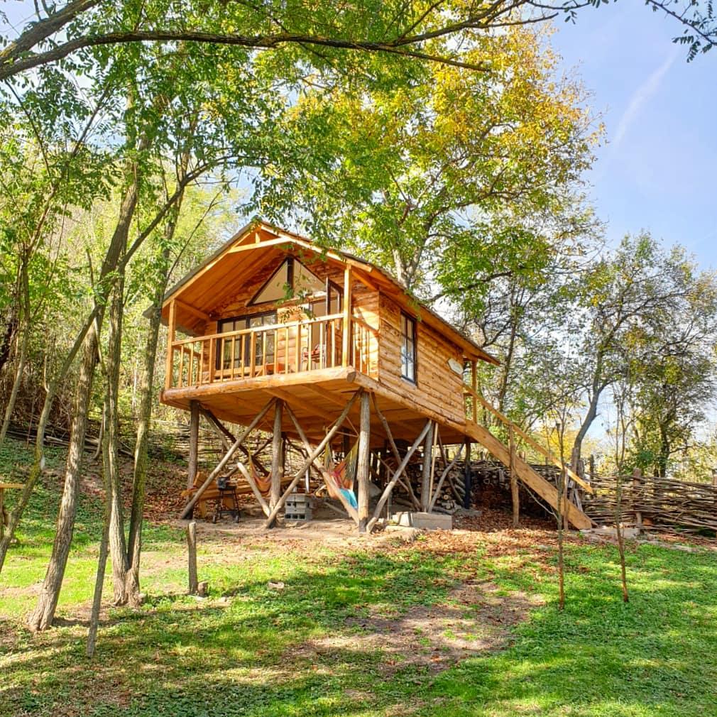 Recomandare cazare în copac: cum a fost să locuim la înălţime într-o căsuţă din Haţeg